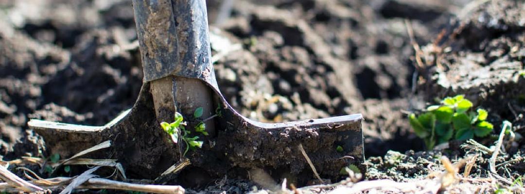 Topsoil or Garden Compost